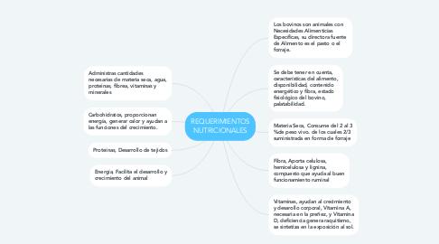 Mind Map: REQUERIMIENTOS NUTRICIONALES