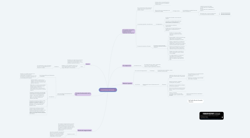 Mind Map: AUDITORIA INTEGRAL