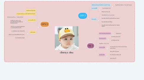 Mind Map: เด็กอายุ 6 เดือน