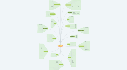 Mind Map: Bloemen