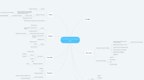 Mind Map: Conferência Incendiados 2021