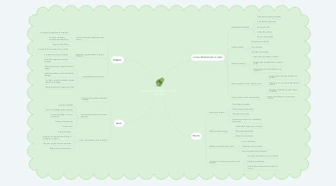 Mind Map: Sistema Preventivo de Don Bosco.