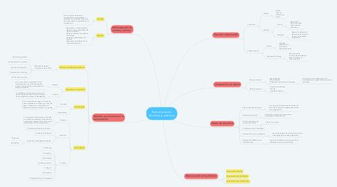 Mind Map: Remuneración (Sueldos y salarios)