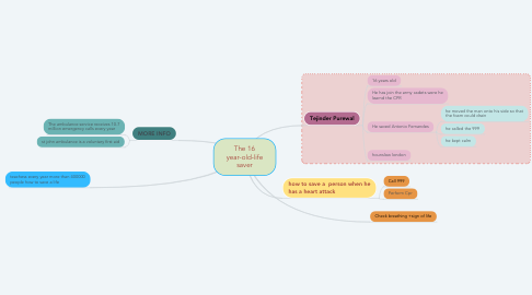 Mind Map: The 16 year-old-life saver