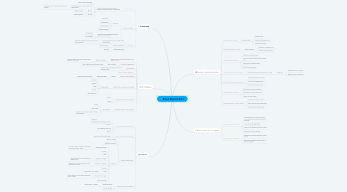 Mind Map: Manual Básico de Excel