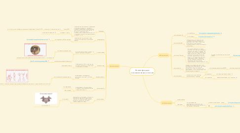 Mind Map: Классификация психологических тестов