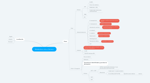 Mind Map: Metabolismo de un fármaco
