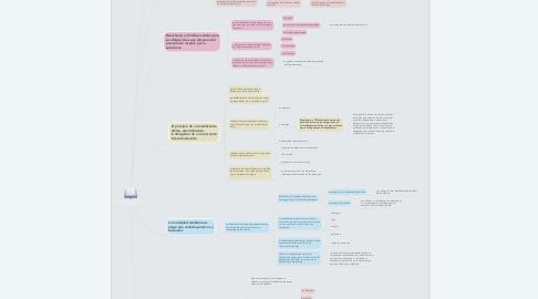 Mind Map: PRINCIPIOS QUE RIGEN A LA BIOÉTICA