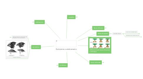 Mind Map: Evoluzione e adattamento