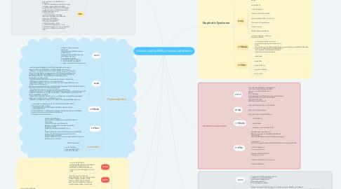 Mind Map: การพยาบาลผู้ป่วยที่มีปัญหาระบบทางเดินปัสสาวะ