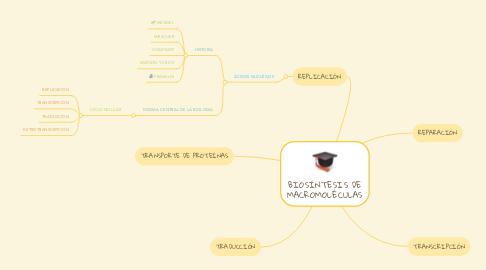 Mind Map: BIOSÍNTESIS DE MACROMOLÉCULAS