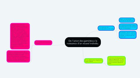 Mind Map: De l'union des gamètes a la naissance d'un nouvel individu.