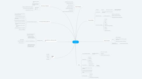 Mind Map: DUELO