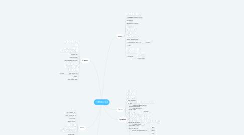 Mind Map: ТОП СОСТАВ