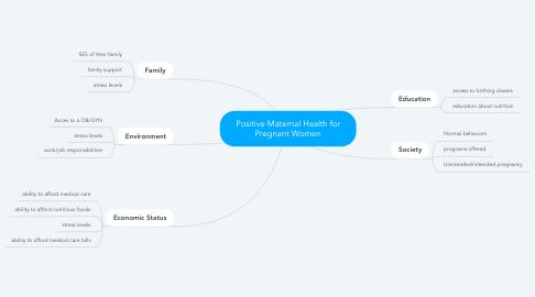 Mind Map: Positive Maternal Health for Pregnant Women