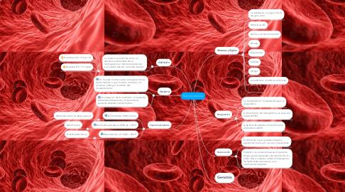 Mind Map: Síndrome Anémico