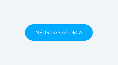Mind Map: NEUROANATOMIA