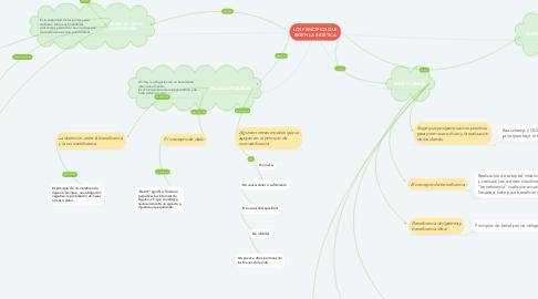 Mind Map: LOS PRINCIPIOS QUE RIGEN LA BIOÉTICA