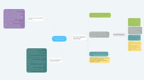 Mind Map: Derecho ambiental y sustentabilidad