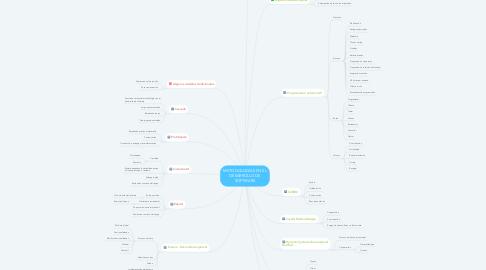Mind Map: METODOLOGÍAS EN EL DESARROLLO DE SOFTWARE