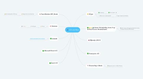 Mind Map: CV Levi Bos