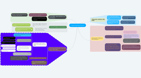 Mind Map: Castro's Domestic Policies