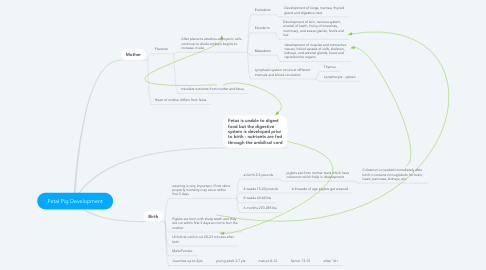 Mind Map: Fetal Pig Development