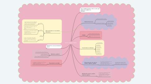 Mind Map: NIIF´S PARA PYMES