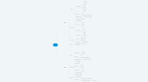 Mind Map: Latim