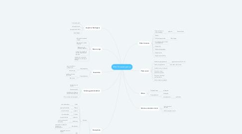 Mind Map: SNA Parassimpático
