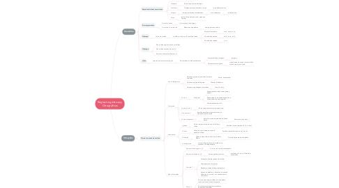 Mind Map: Reglas Lingüísticas y Ortográficas