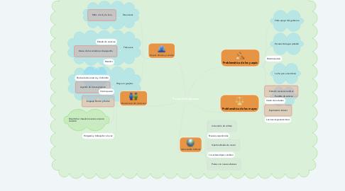 Mind Map: Producto Integrador