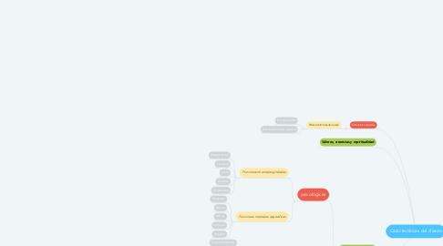 Mind Map: Características del cliente