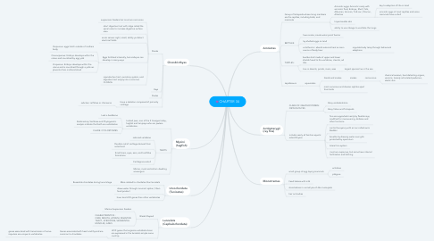 Mind Map: CHAPTER 34