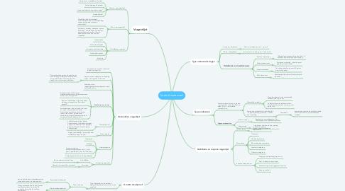 Mind Map: Sociaal onderzoek