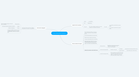 Mind Map: CIVILITZACIONS FLUVIALS