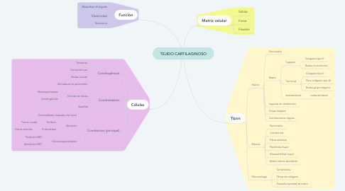 Mind Map: TEJIDO CARTILAGINOSO
