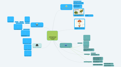 Mind Map: evolucion de los seres vivos_UNAD_brayan david vasquez rodriguez