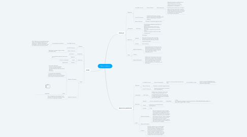 Mind Map: Stacy's Lessons