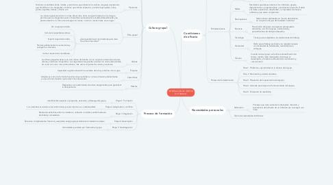 Mind Map: INTEGRACIÓN DE GRUPOS DE TRABAJO