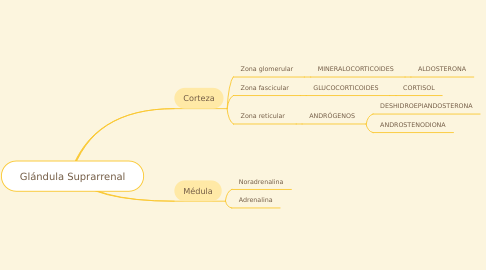 Mind Map: Glándula Suprarrenal