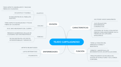 Mind Map: TEJIDO CARTILAGINOSO