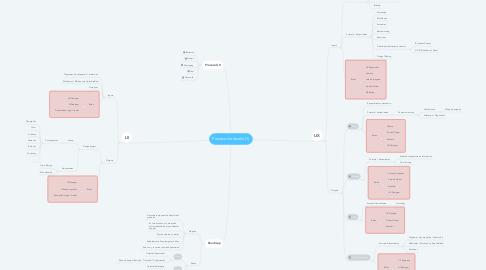 Mind Map: Proceso de diseño (1)