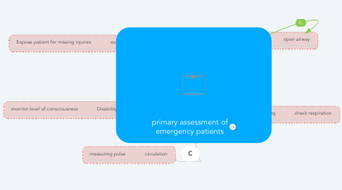 Mind Map: primary assessment of emergency patients