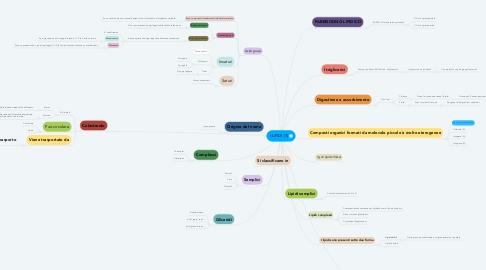 Mind Map: I LIPIDI (1)