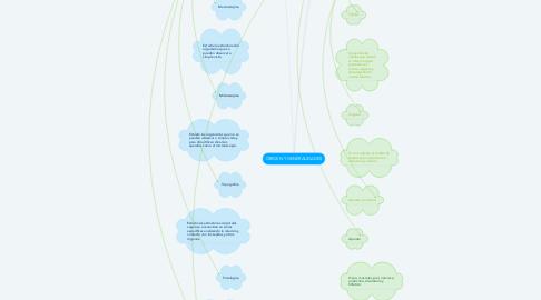 Mind Map: ORIGEN Y GENERALIDADES