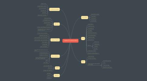 Mind Map: TUMI KITCHEN IDEAS