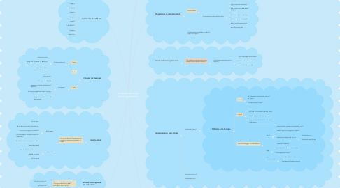 Mind Map: La communication dans l'organisation