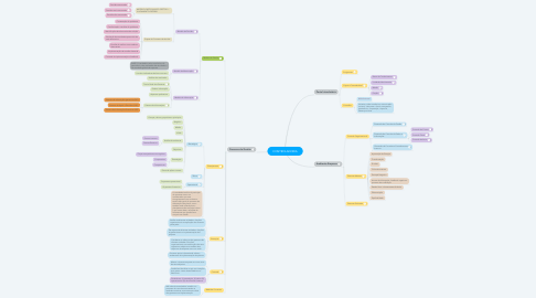 Mind Map: CONTROLADORIA
