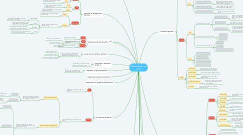Mind Map: Bilimsel araştırma süreci